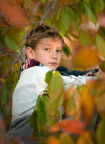 Boy in tree with colorful leaves